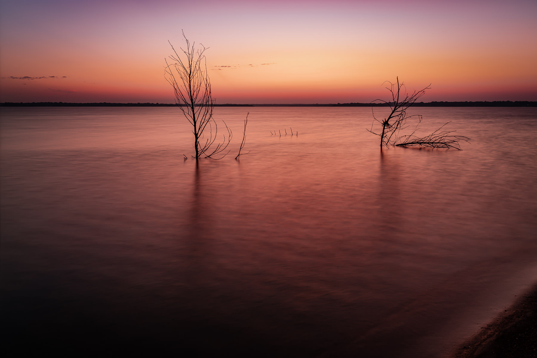 Flooded trees reach out of the waters of North Texas' Lake Lavon.