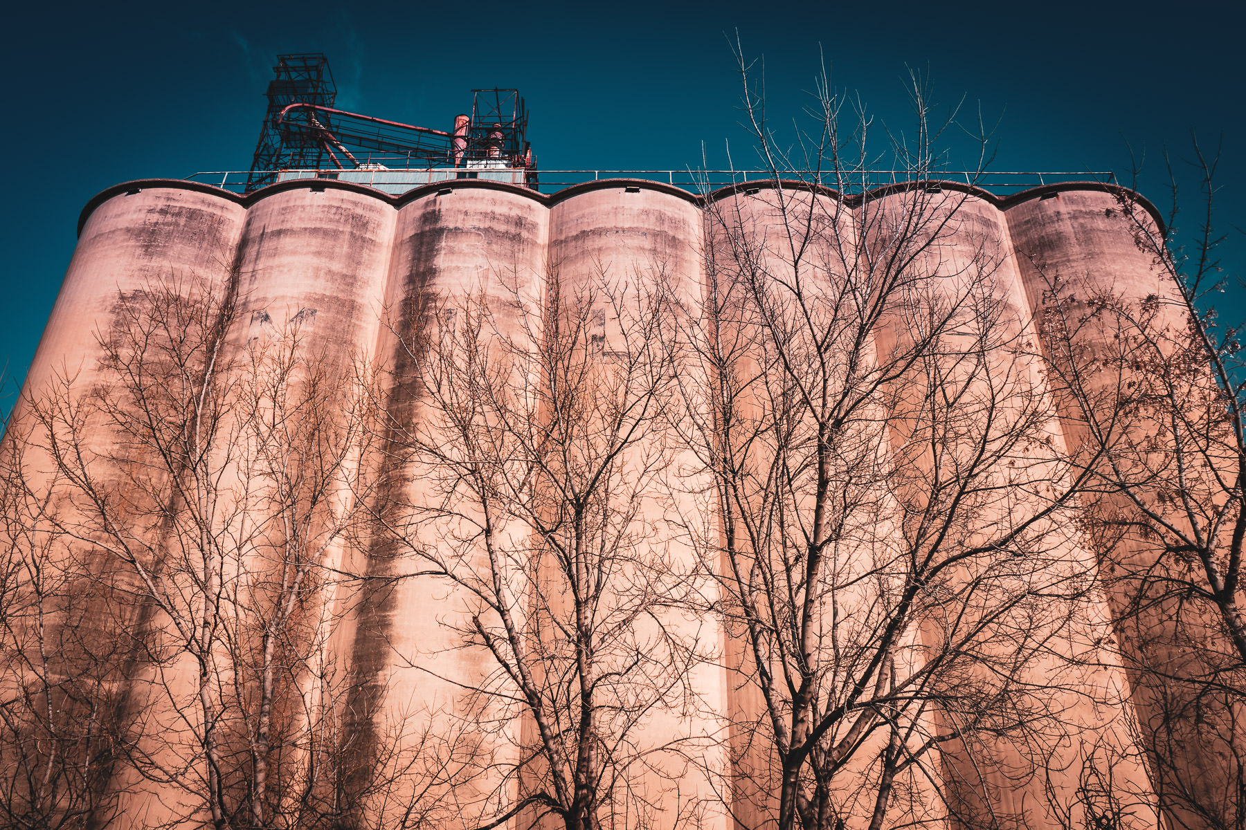 Silos at a grain elevator in Grapevine, Texas.