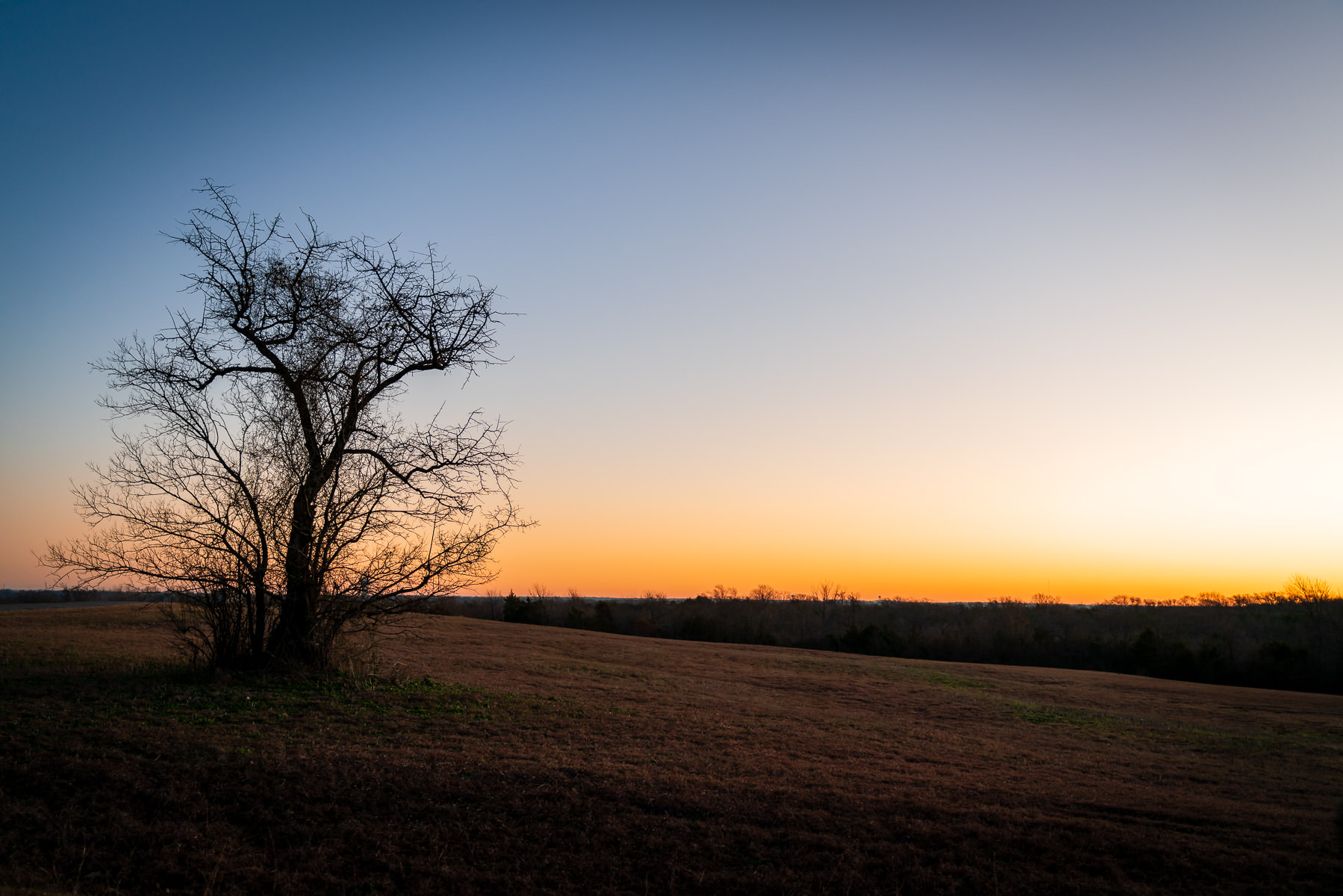 The sun rises on McKinney, Texas' Erwin Park.
