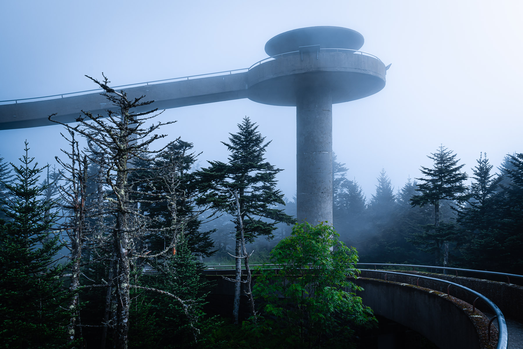 The observation tower at Clingmans Dome rises through the early-morning Great Smoky Mountains National Park fog.