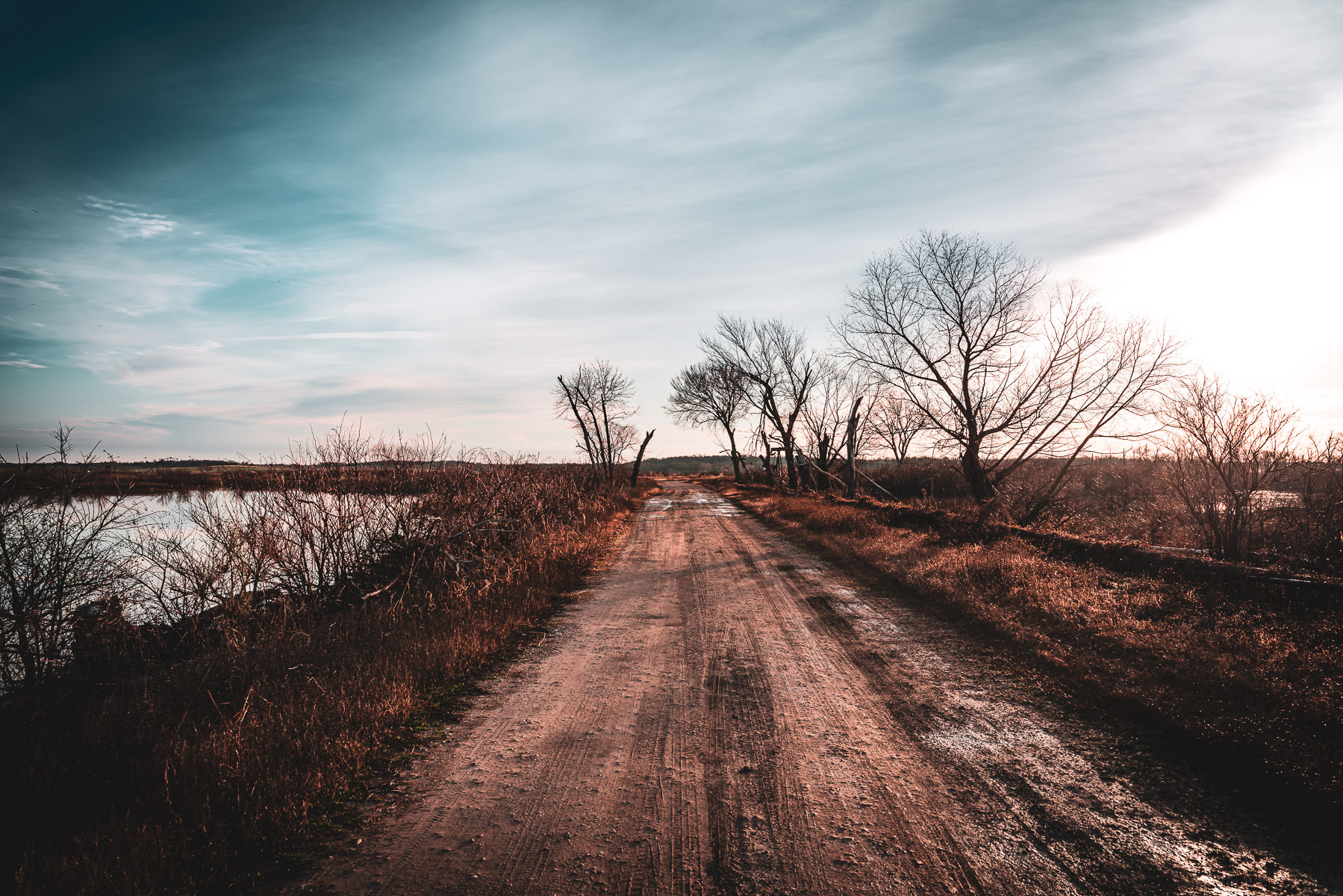 A dirt road leads through Texas' Hagerman National Wildlife Refuge.