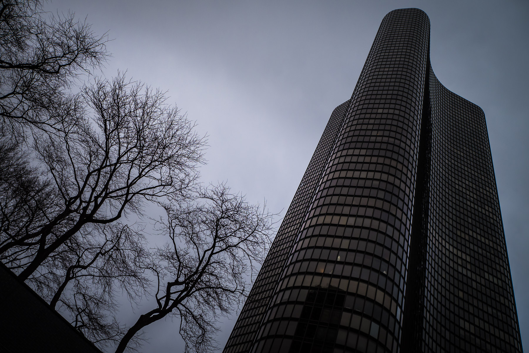 Lake Point Tower rises over barren wintry trees into the overcast Chicago sky.