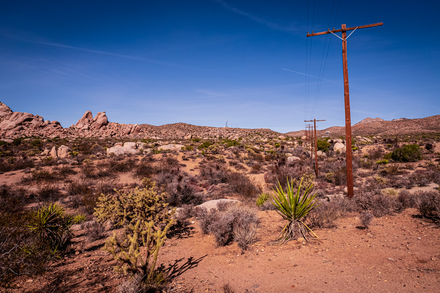 Electrical pylons cross the desert at Granite Pass, Mojave National Preserve, California.