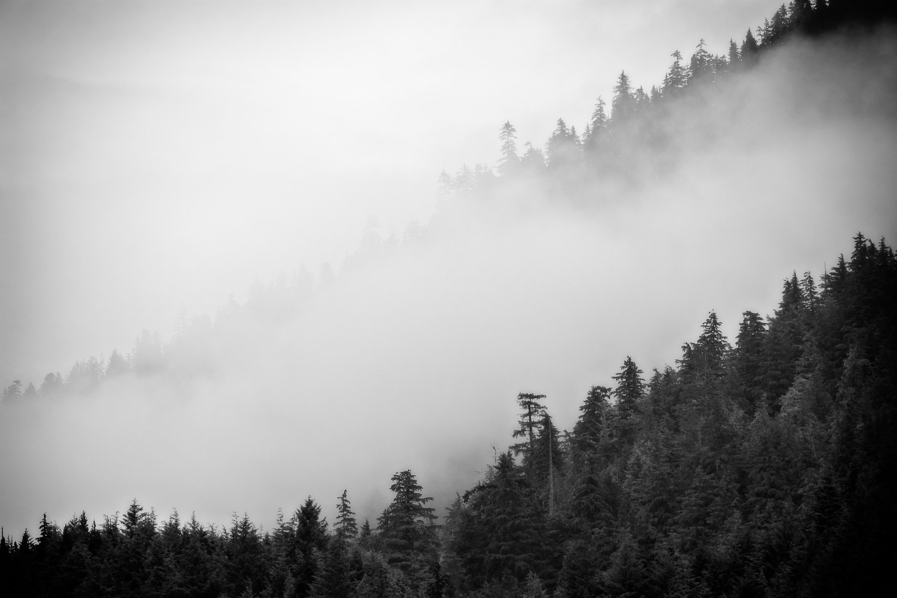 Fog rolls over the mountains of Revillagigedo Island above Ketchikan, Alaska.