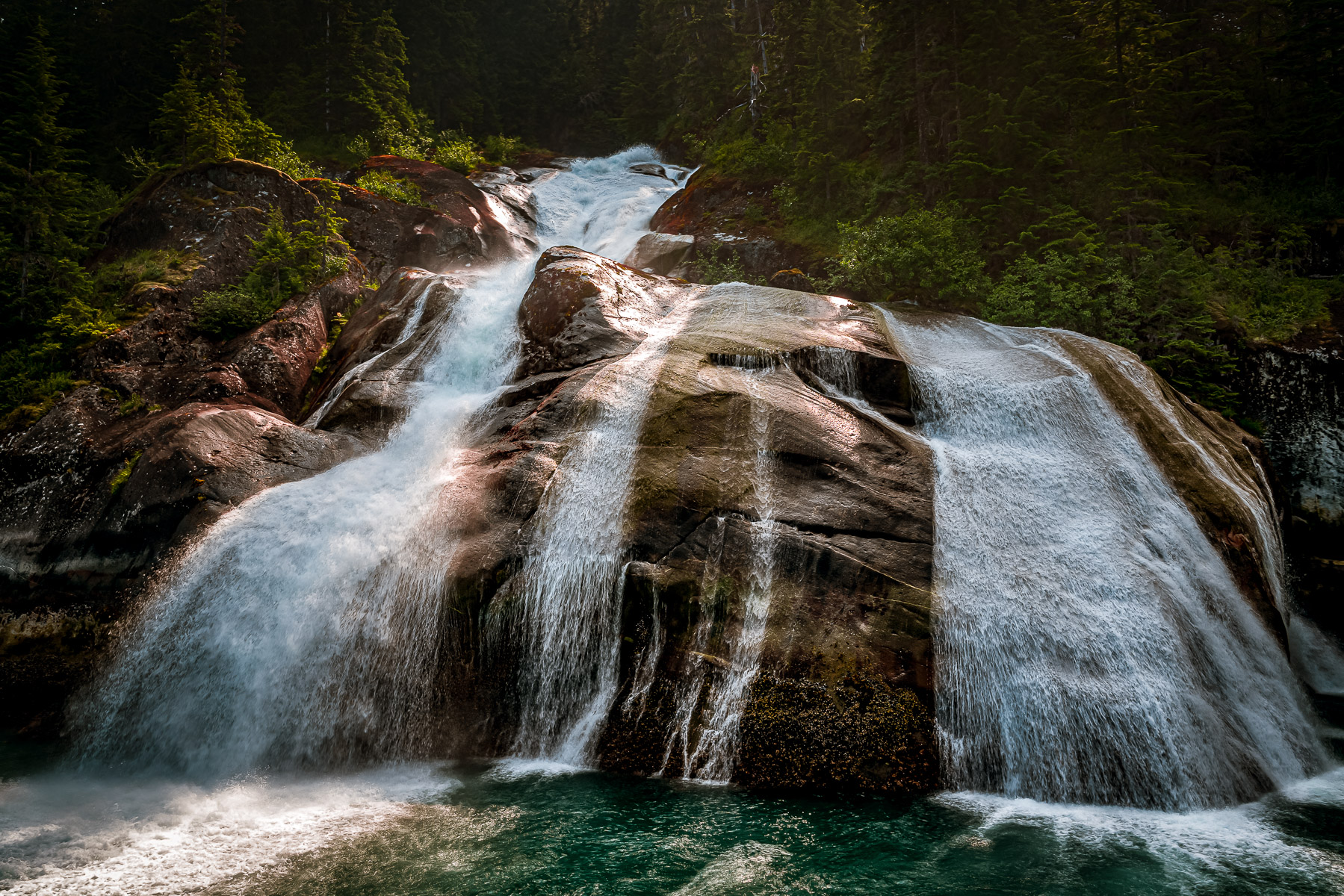 A waterfall emerges from the forest along the shore of Alaska's Tracy Arm Fjord.