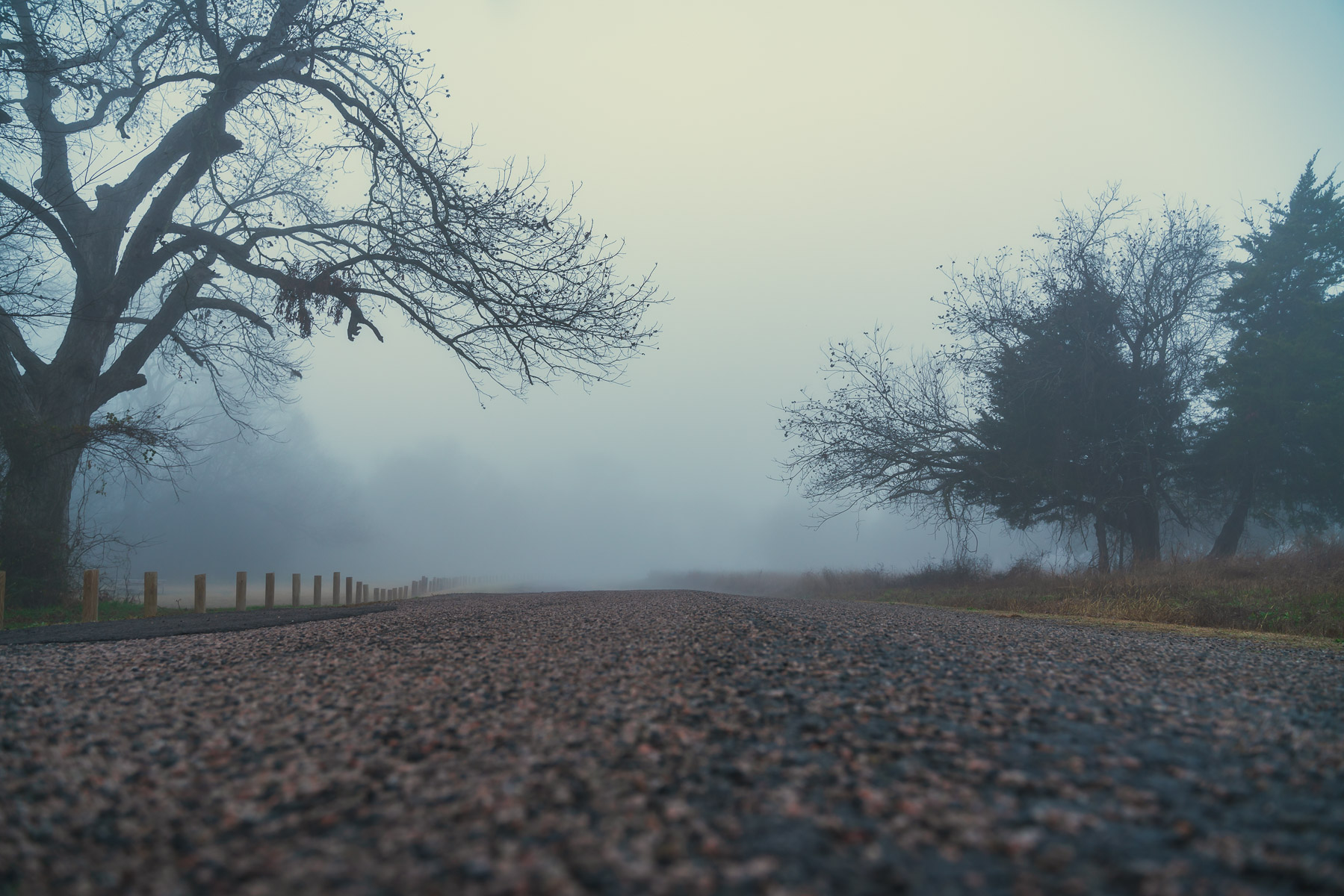 A foggy morning at McKinney, Texas' Erwin Park.