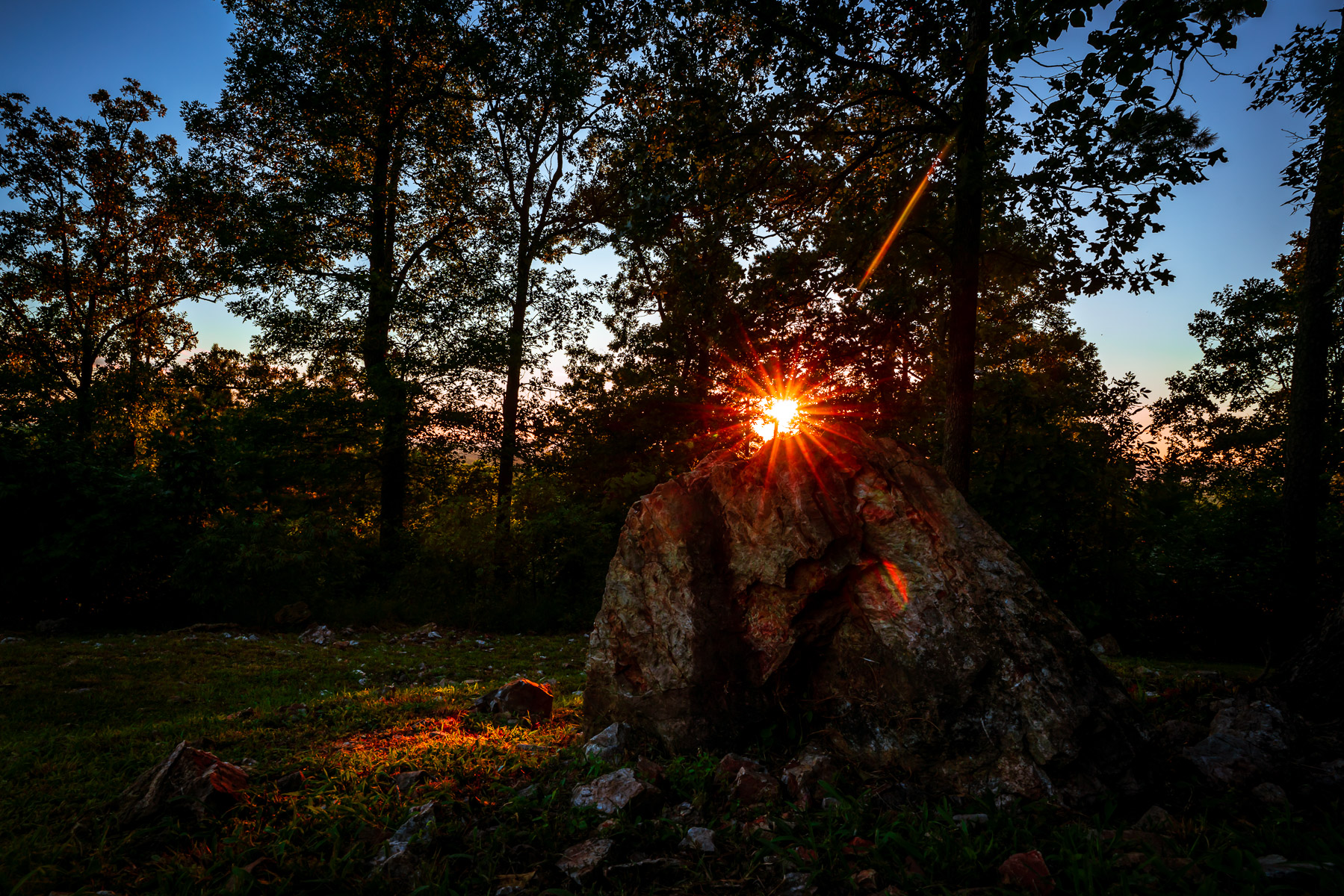 The evening sun shines through trees and over rocks near Mena, Arkansas.