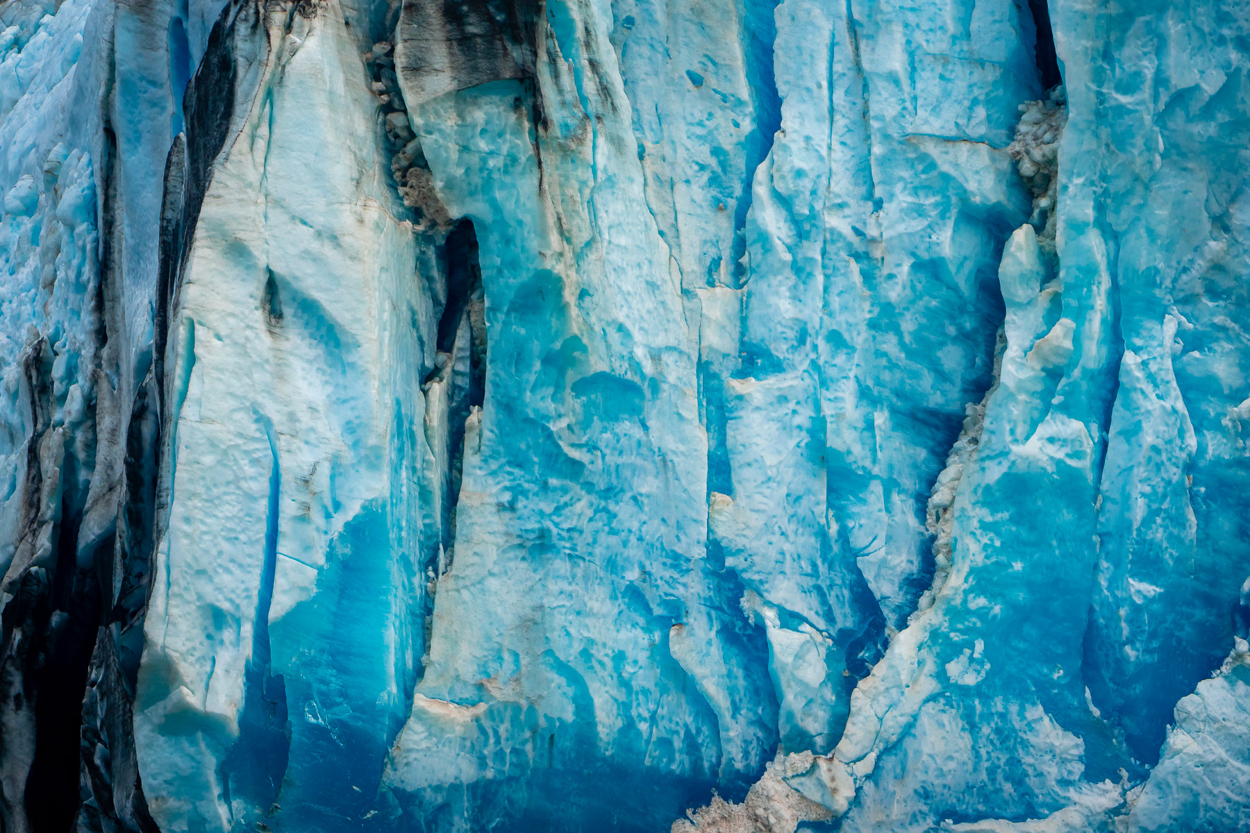Detail of an iceberg spotted in Alaska's Tracy Arm Fjord.