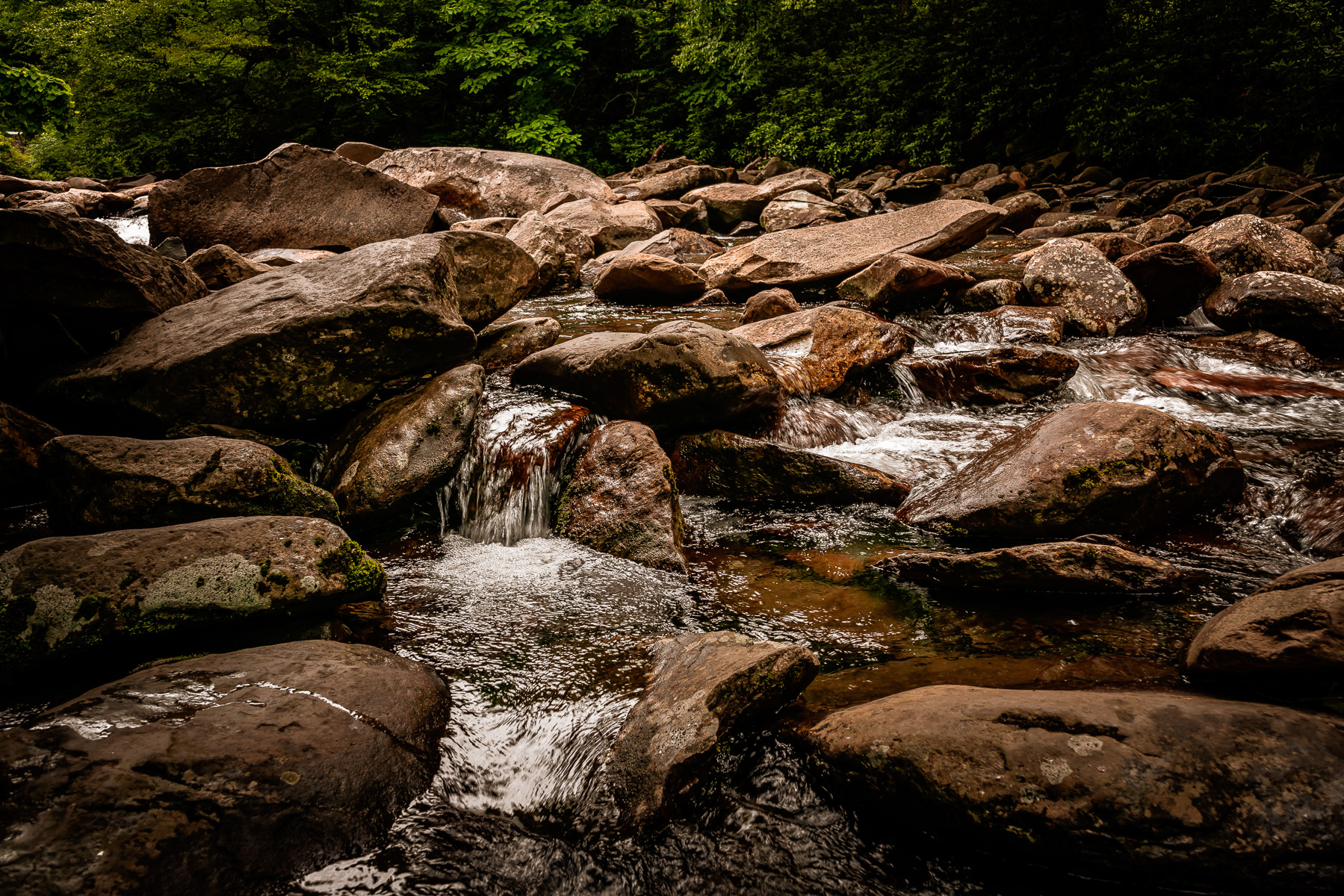 The West Prong of the Little Pigeon River flows over rocks in Tennessee's Great Smoky Mountains National Park.