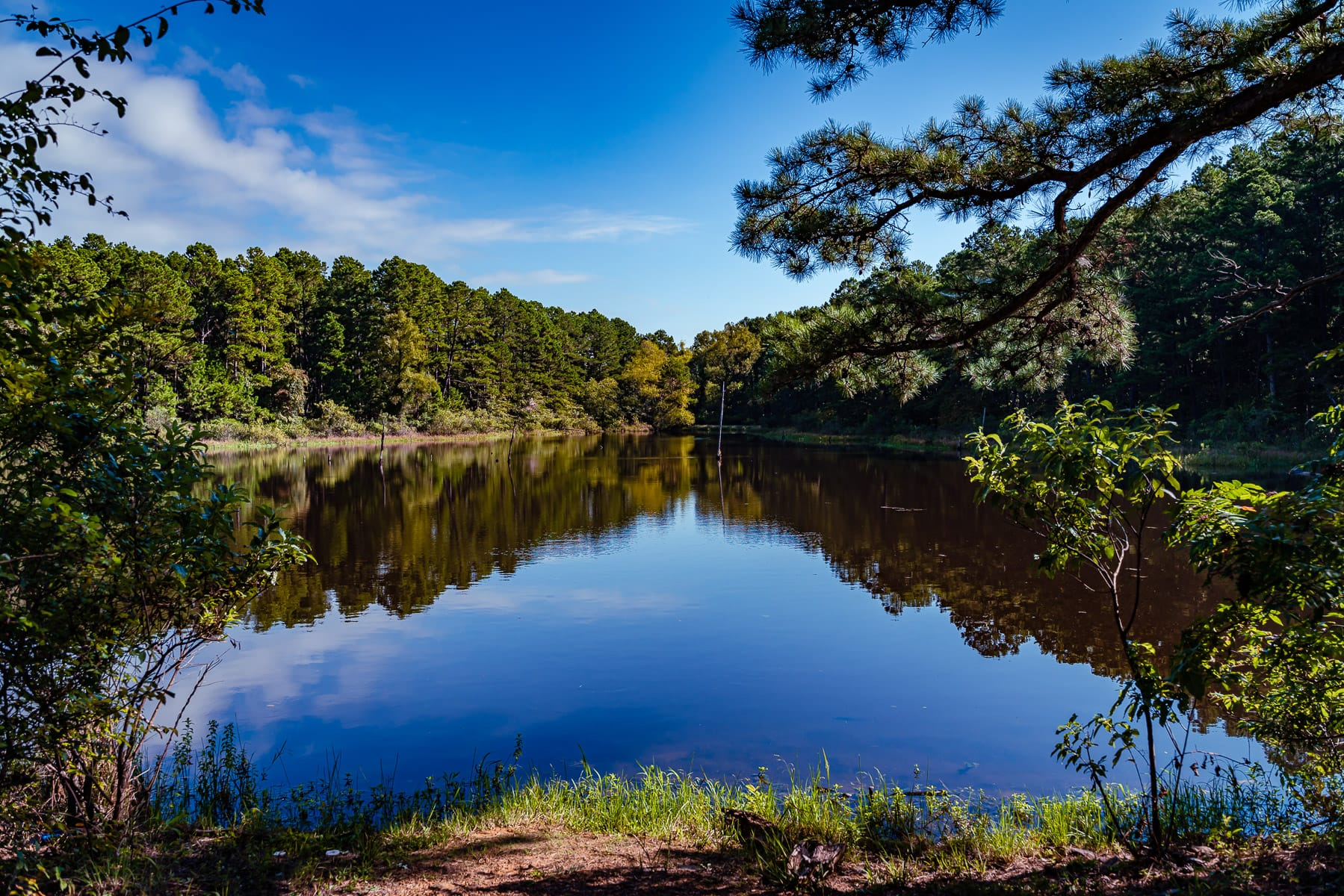 The tranquil waters of a pond at Oklahoma's McGee Creek State Park.