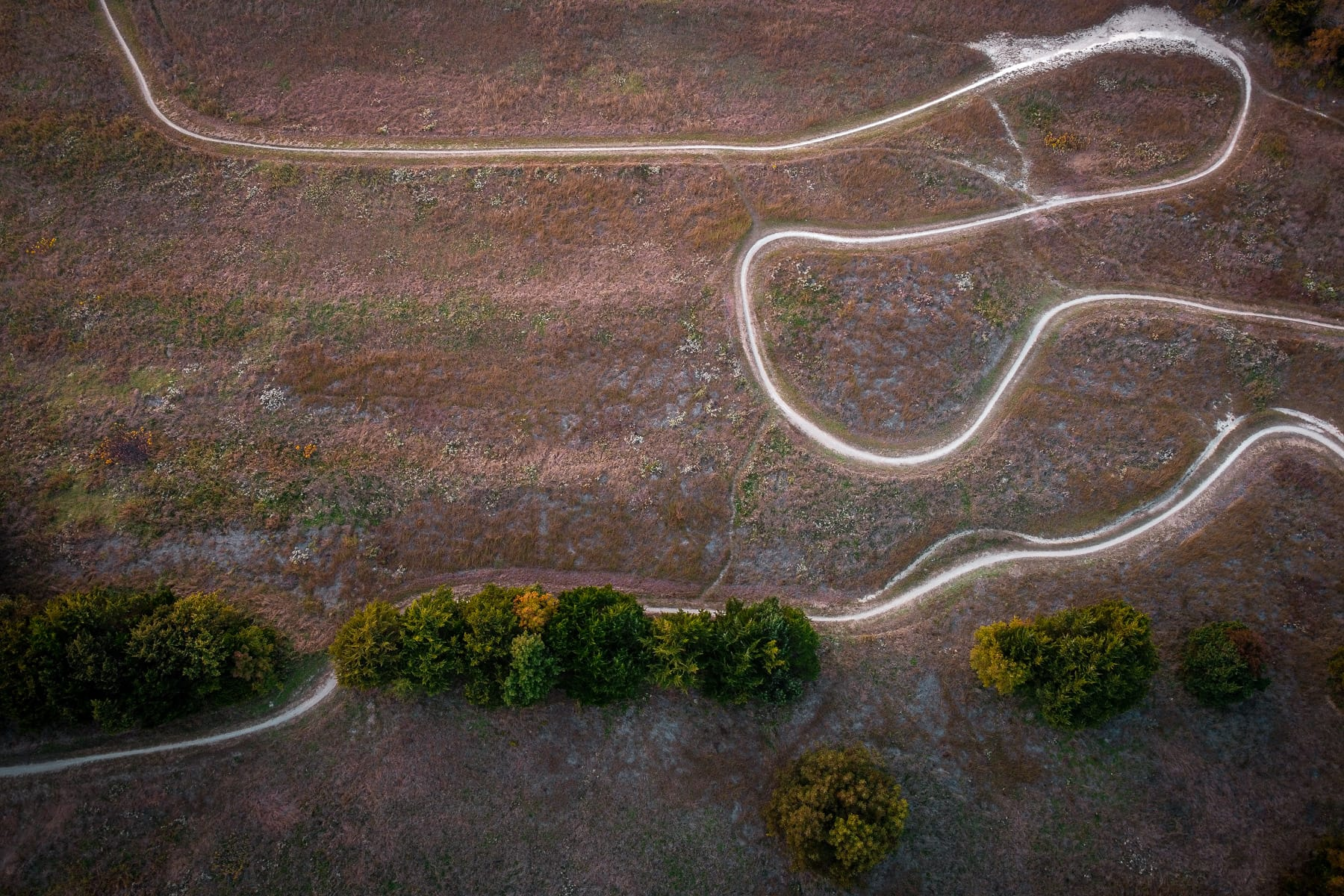 Bike trails zig-zag across the landscape of McKinney, Texas' Erwin Park.