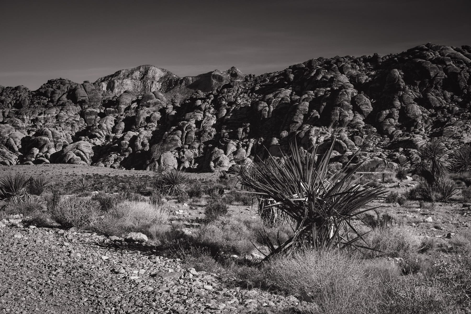 The dry desert landscape of Nevada's Red Rock Canyon.