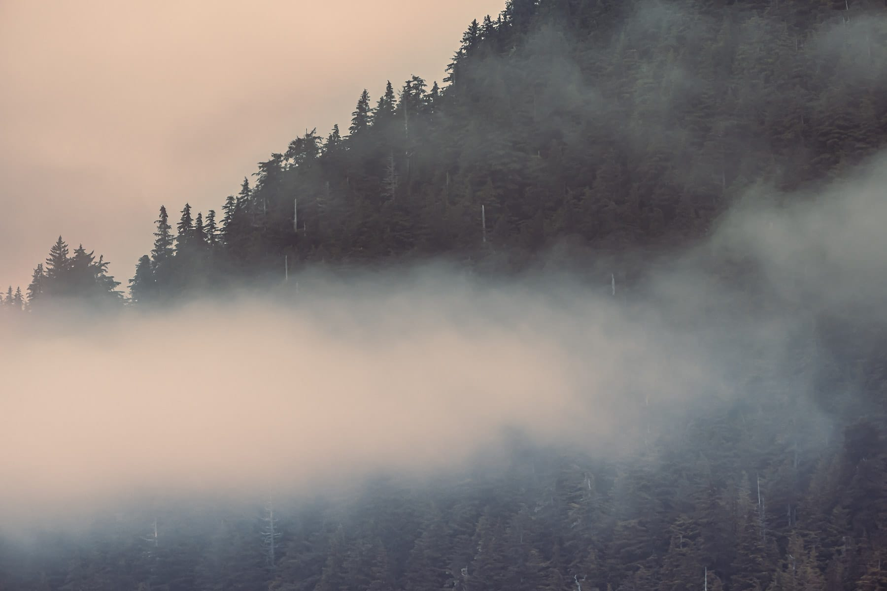 Morning haze and low clouds in the mountains above Ketchikan, Alaska.