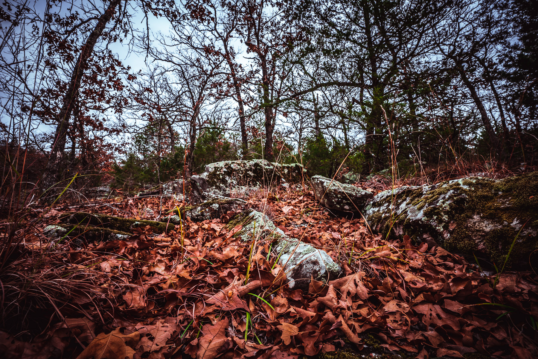 Fallen autumn leaves among the rocky landscape at Oklahoma's Arrowhead State Park.
