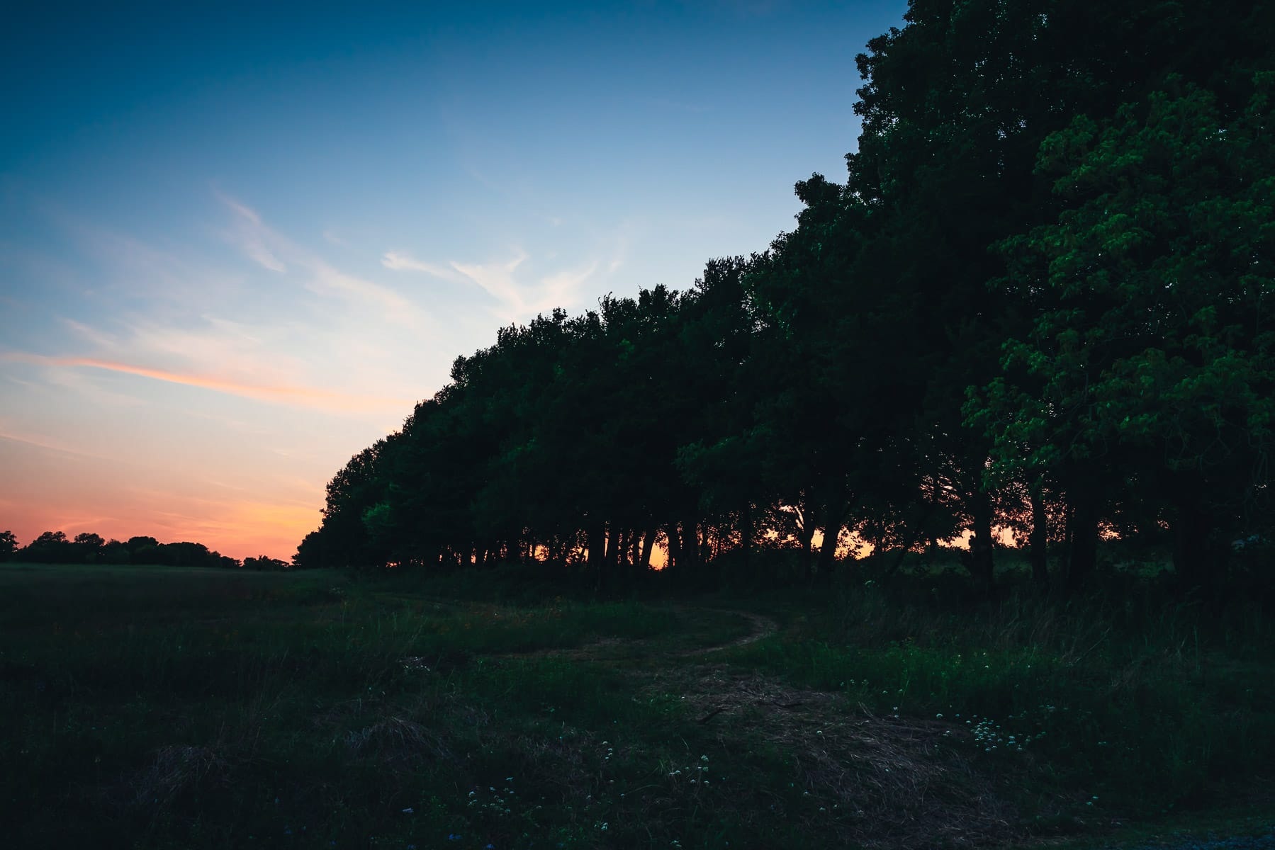 The sun sets on the far side of a line of trees at McKinney, Texas' Erwin Park.