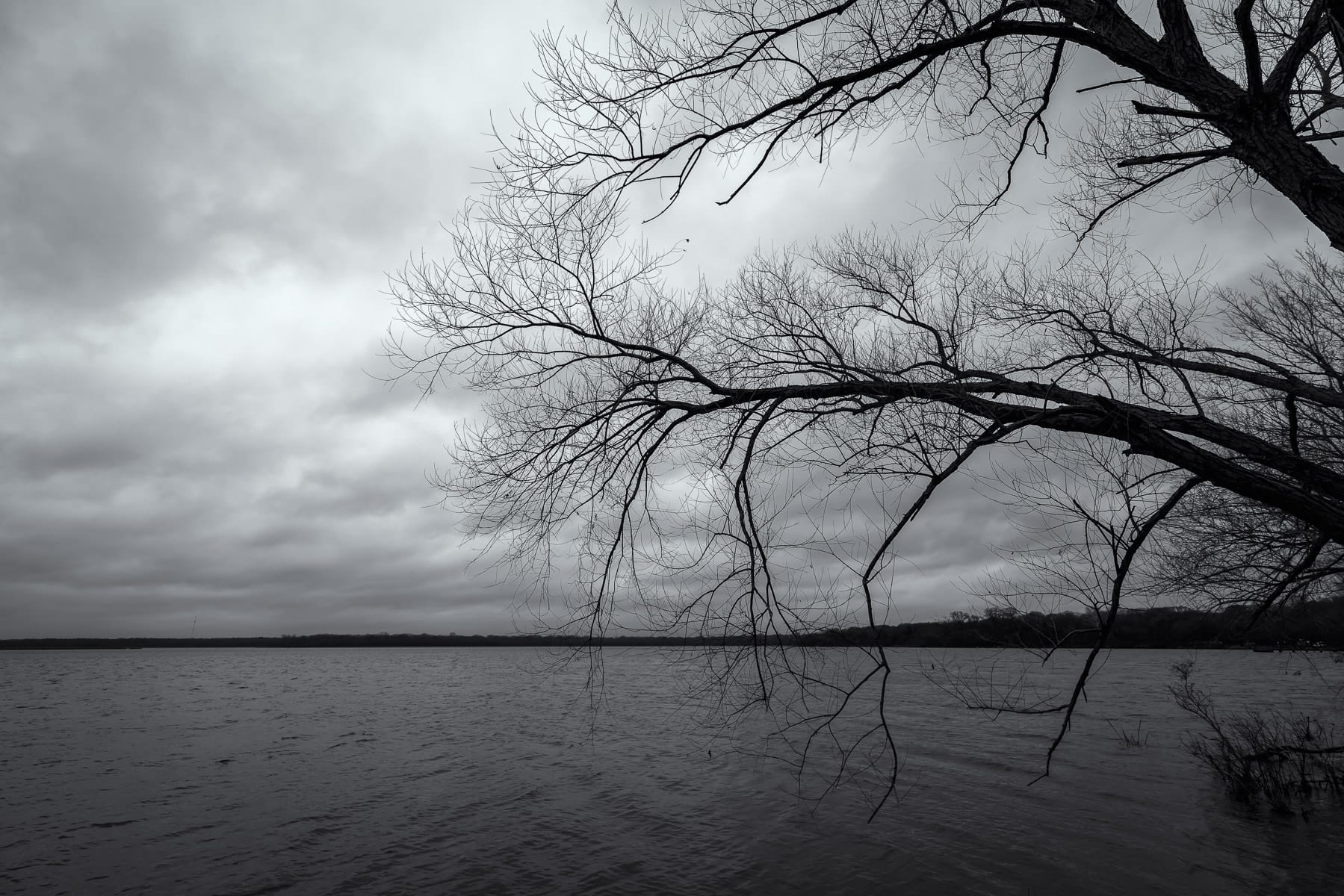 Tree branches reach over the lake at Texas' Fort Parker State Park on a cloudy, dreary day.