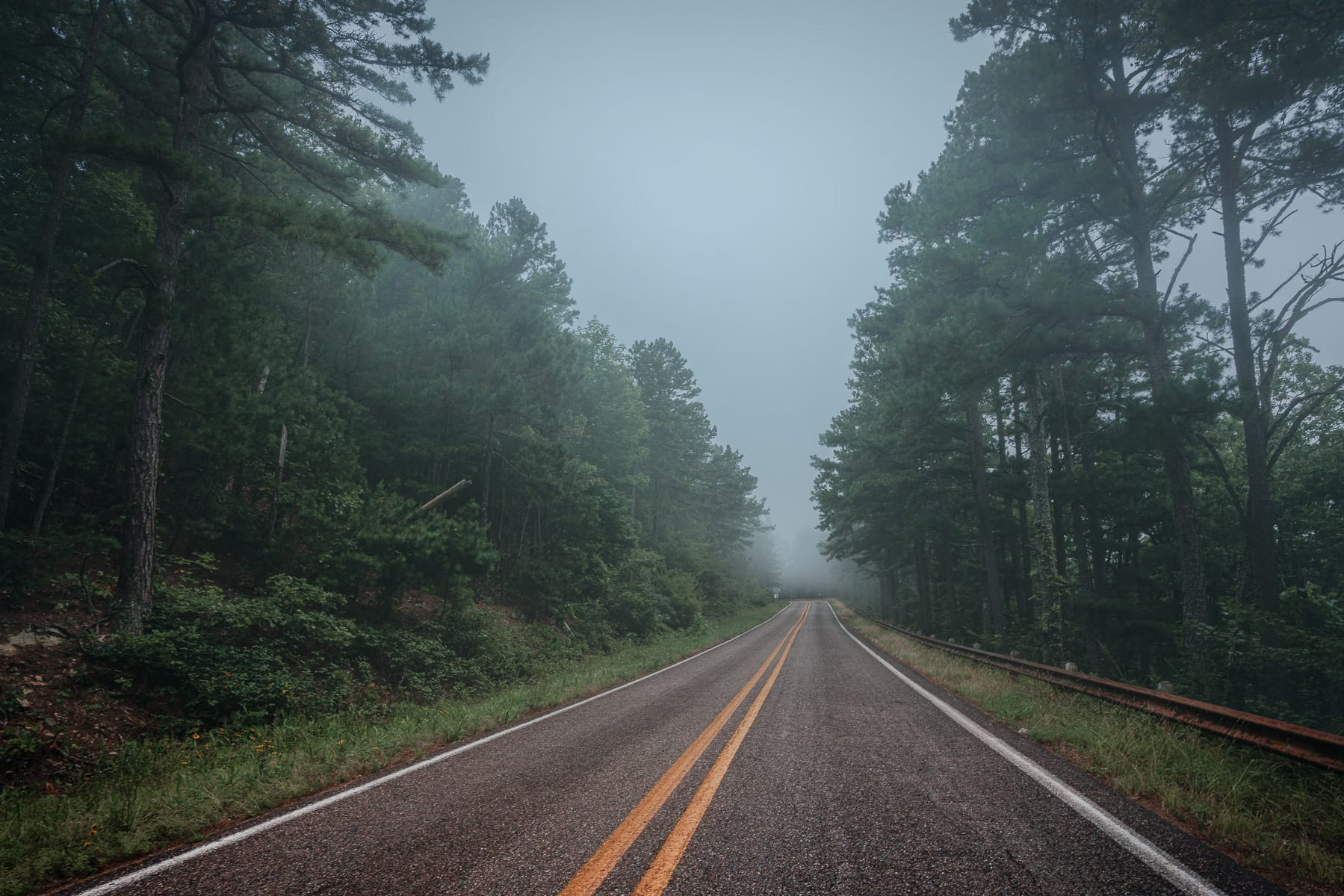 Morning fog on the Talimena National Scenic Byway near Mena, Arkansas.