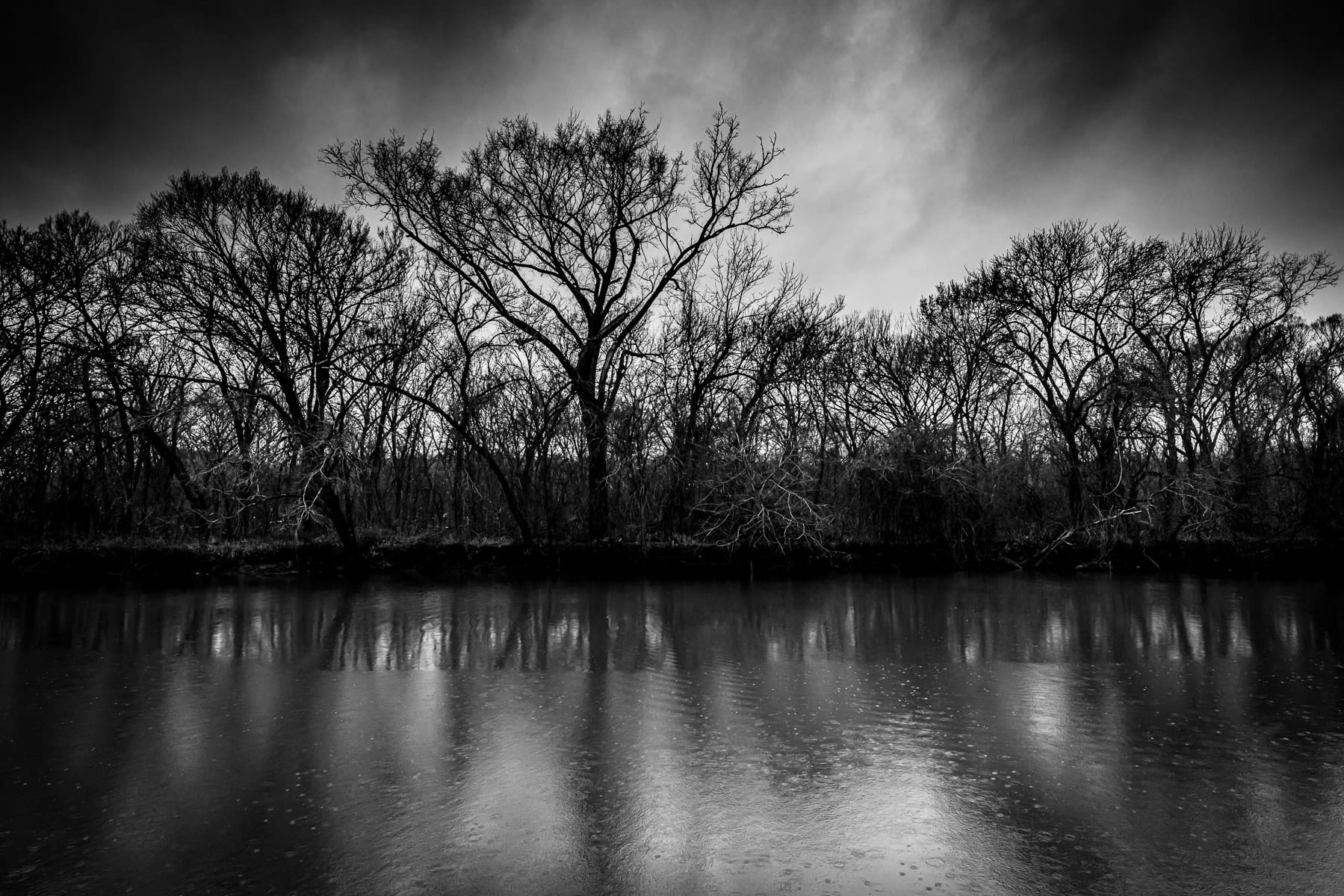 Trees on the far bank of the Navasota River at Fort Parker State Park, Texas.