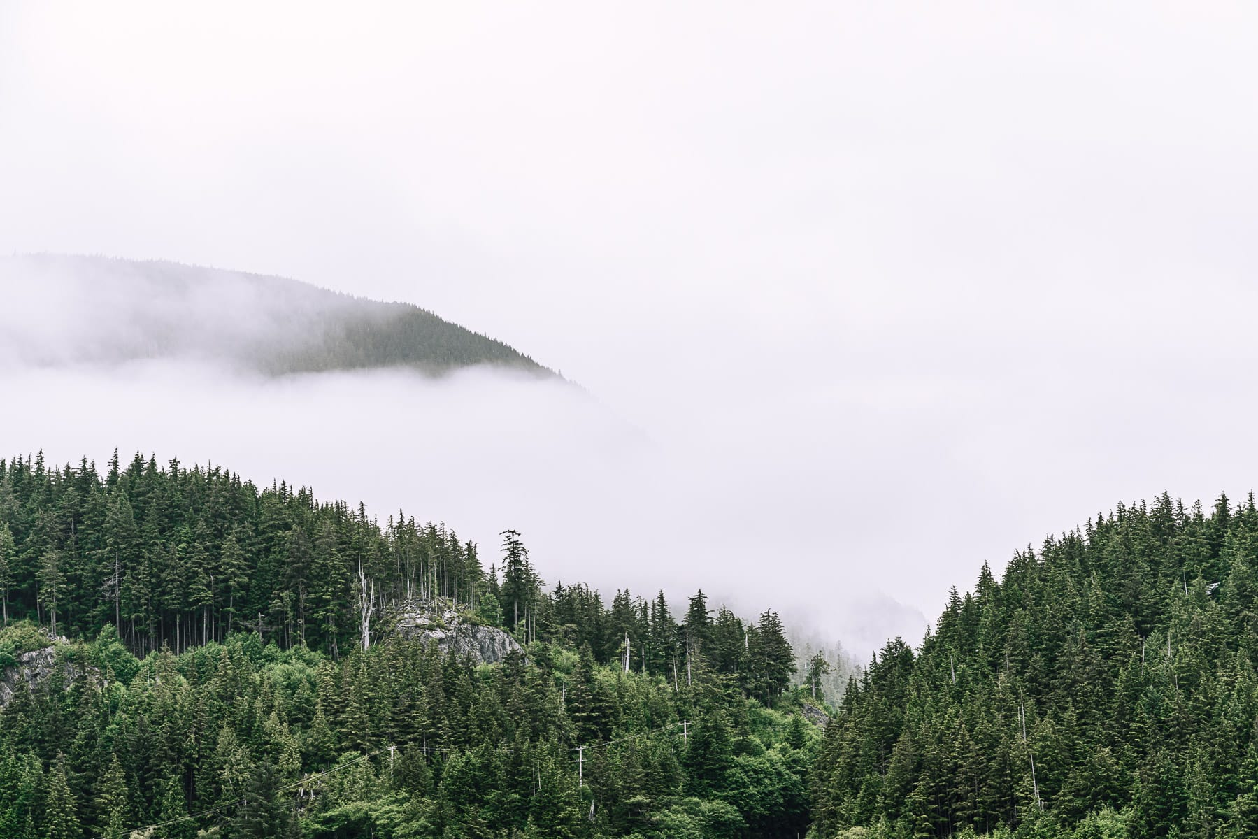 Fog covers the forested mountains above Ketchikan, Alaska.