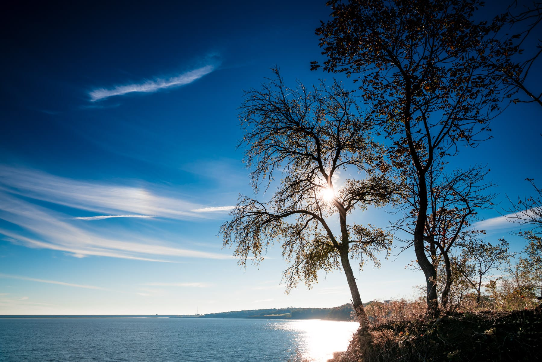 Trees eclipse the morning sun at North Texas' Eisenhower State Park on the shores of Lake Texoma.