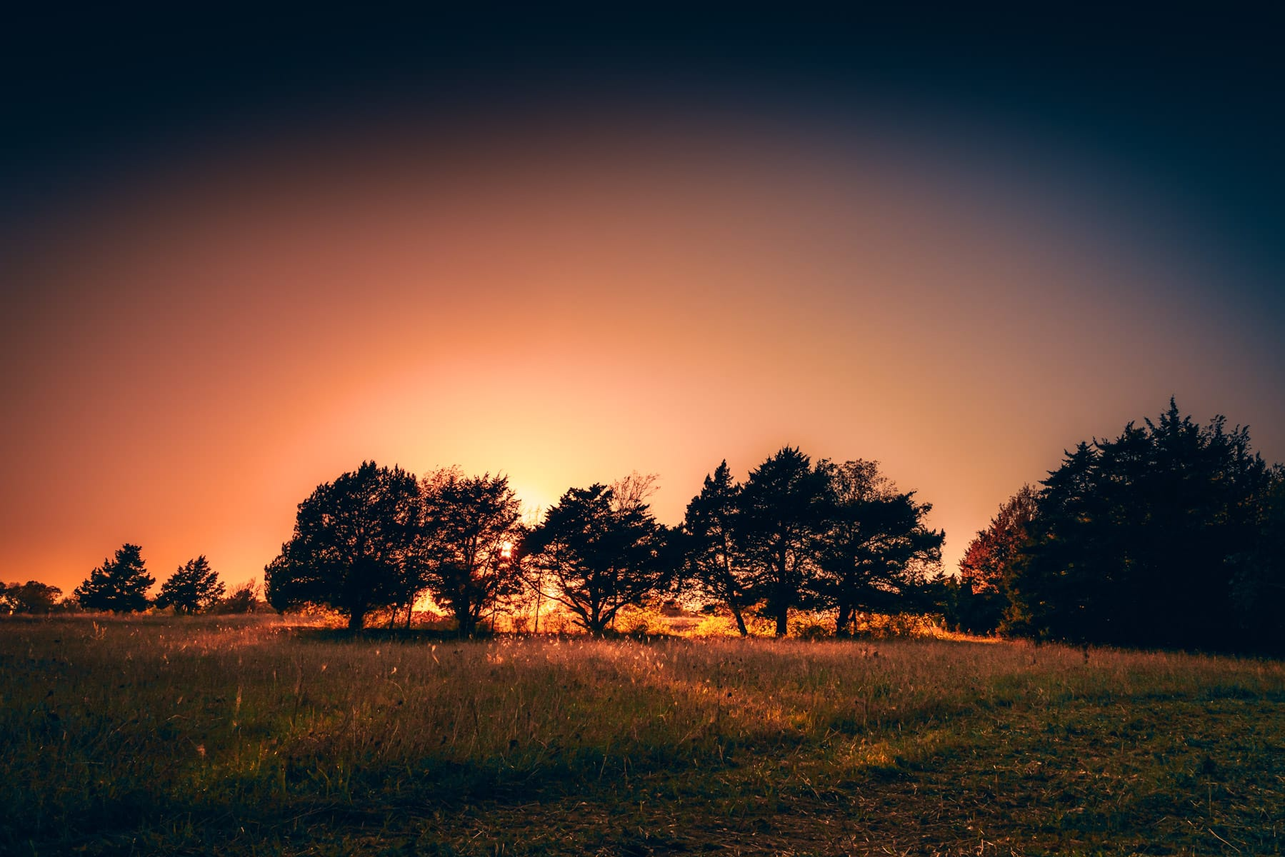 The sun sets on a small grove of trees at McKinney, Texas' Erwin Park.