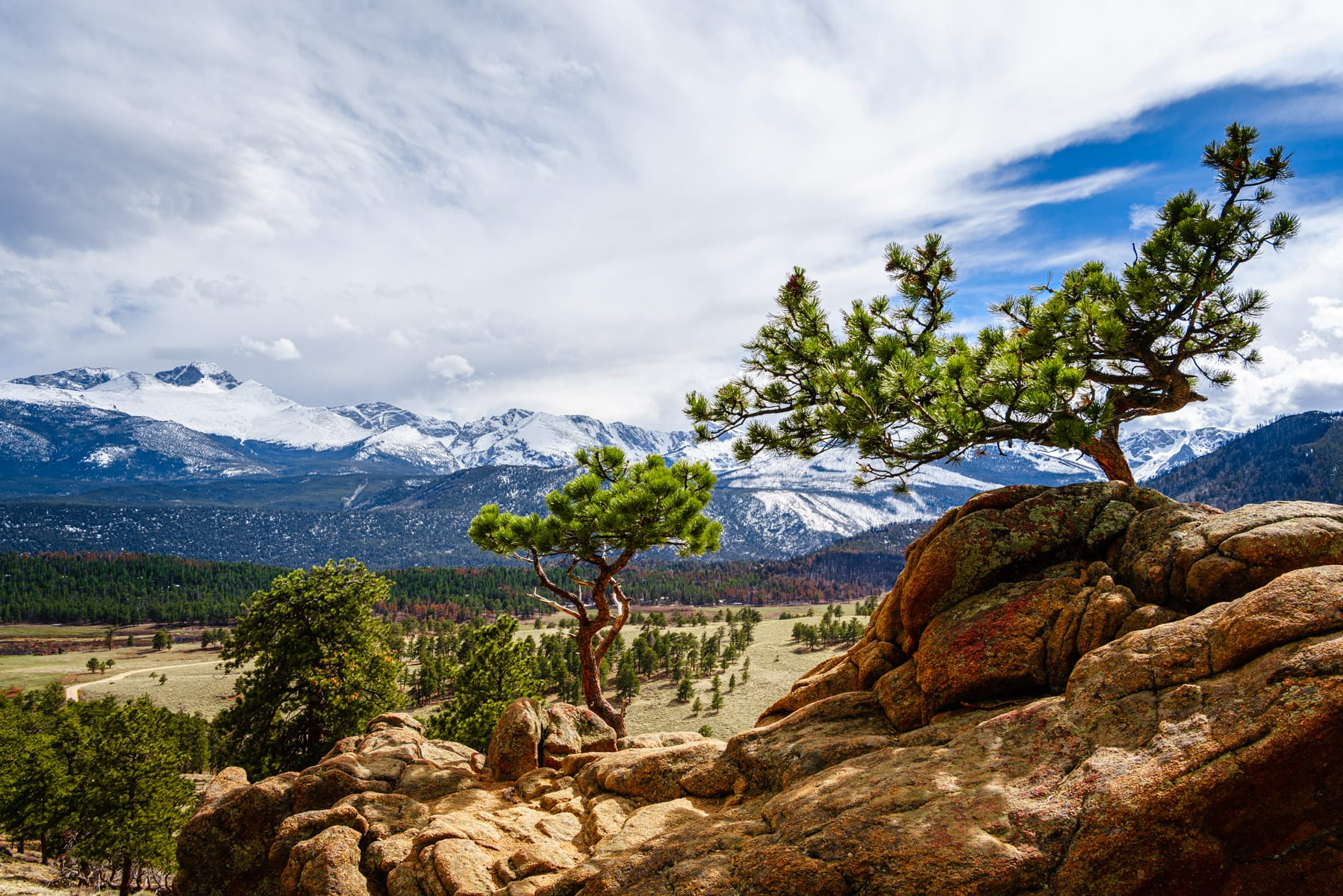 Trees grow from a rock outcropping at Colorado's Rocky Mountain National Park.