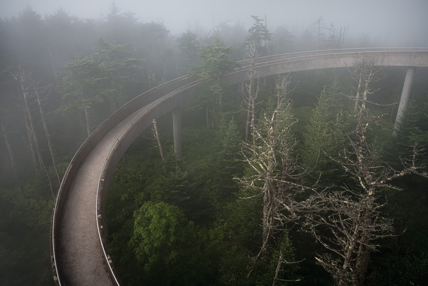 The ramp leading to the top of the observation tower at the Great Smoky Mountains National Park's Clingman's Dome curves through the morning fog.