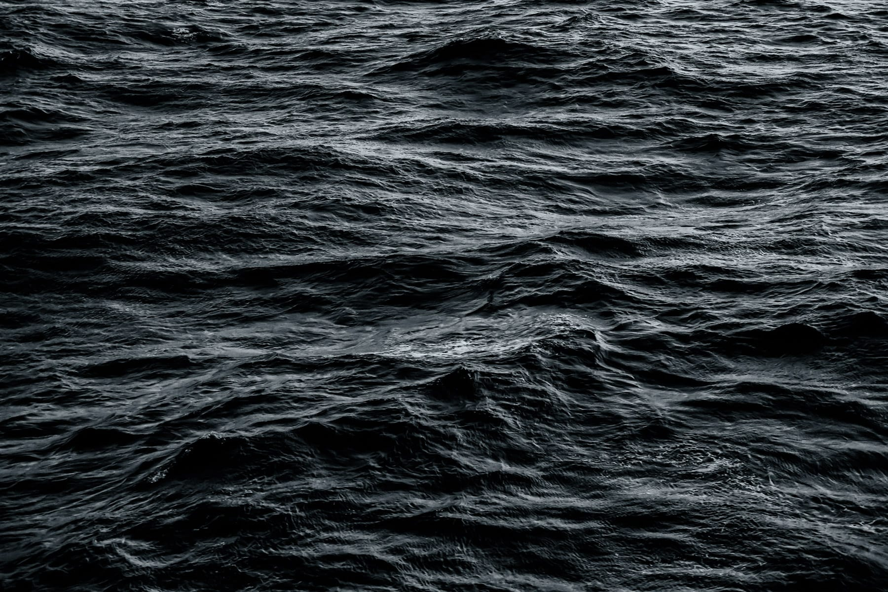 The ever-changing surface of the Gulf of Mexico.