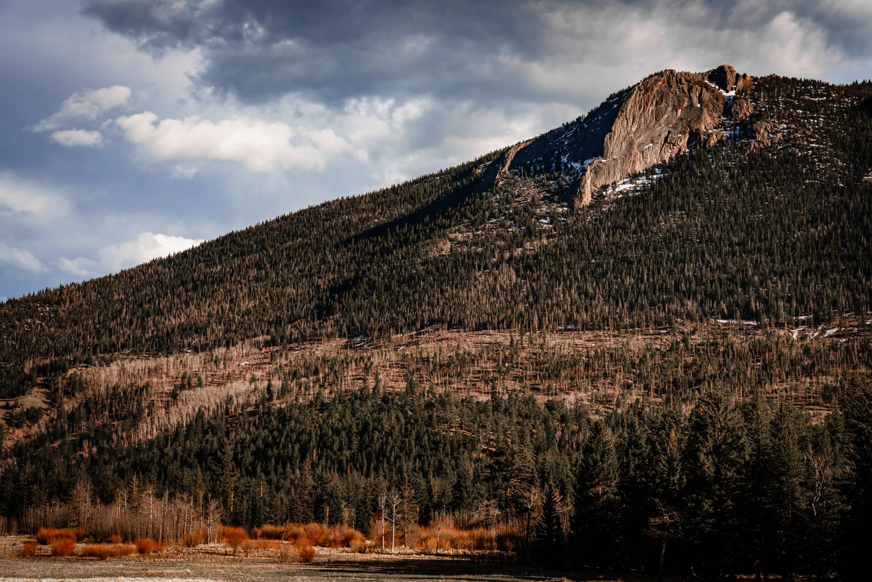 The forested and mountainous landscape of Colorado's Rocky Mountain National Park.